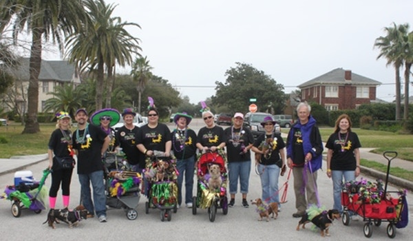 Barkus And Meoux Parade, Galveston 2013 T-Shirt Photo