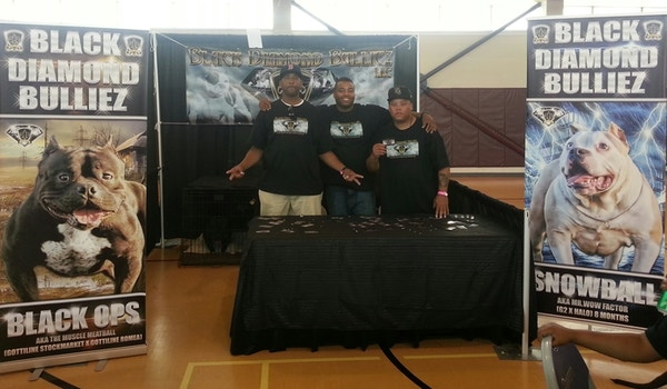 Have A Blast At The Dog Show With Our Custom Ink T Shirts On.. T-Shirt Photo