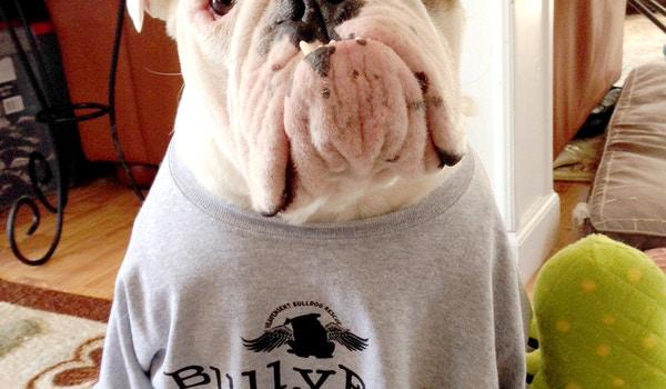 Bulldogs Love Custom Ink! T-Shirt Photo