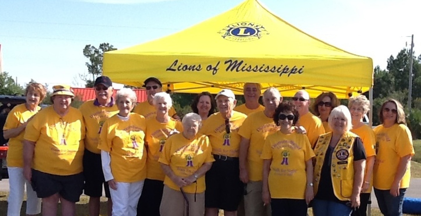 """Diamondhed Lions """"Walk For Sight"""" 2015 T-Shirt Photo"""