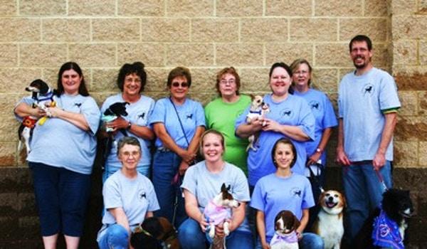 The St. Louis Senior Dog Project Shirts T-Shirt Photo