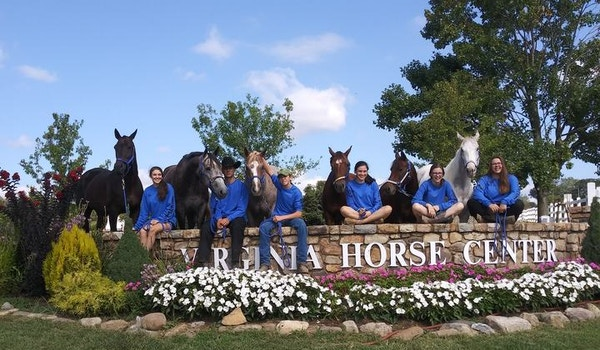 2019 State Horse Show T-Shirt Photo