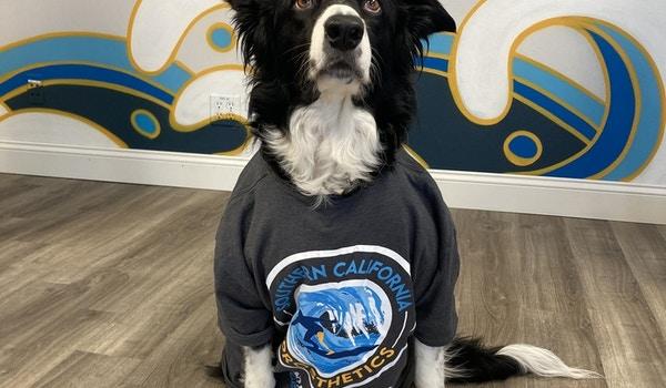Bear Loves His Customink Shirt! T-Shirt Photo